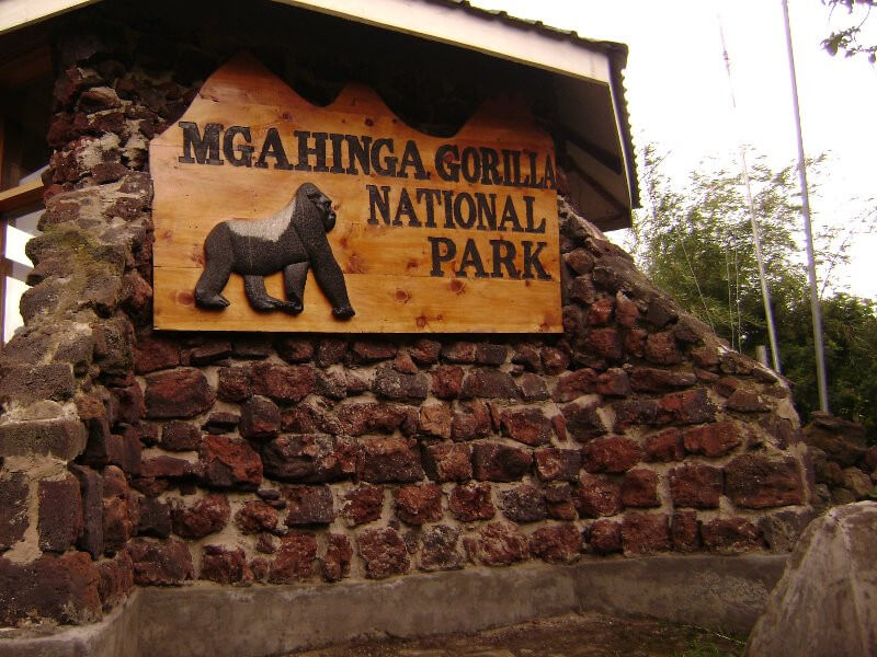 5 Days Mgahinga Gorilla Safari