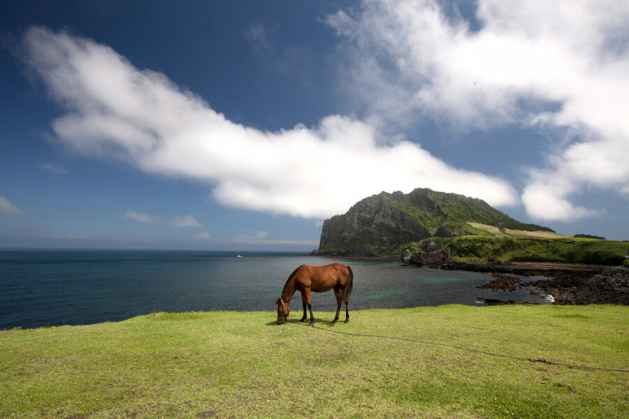 Natural Wonders of the World, JEJU-3
