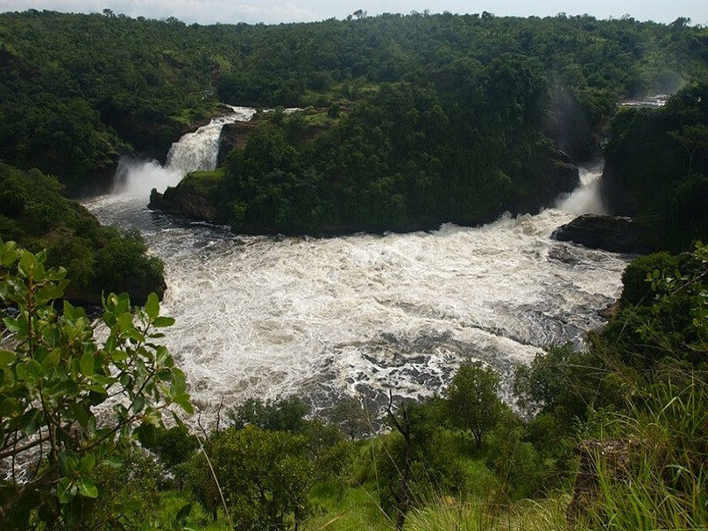 6 Days Murchison Falls & Budongo Forest