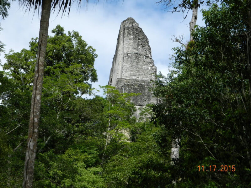 Tikal National Mayan Park - Jungle Lodge