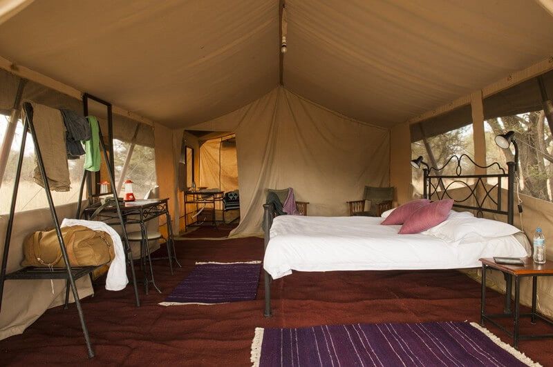 7-DAY TARANGIRE, SERENGETI & NGORONGORO