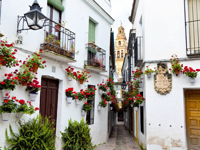 8-day Classic Andalucia Fly & Drive