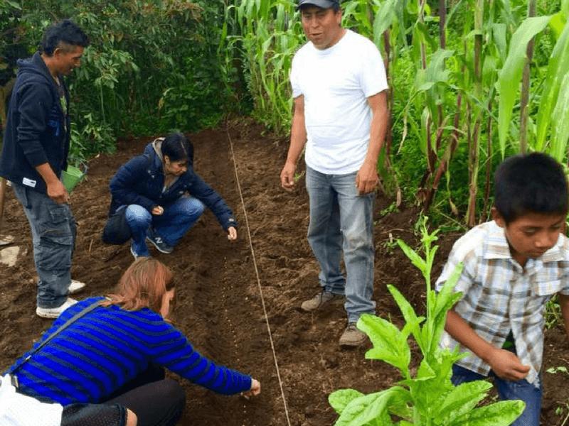 AGROTURISM IN CHIPIACUL
