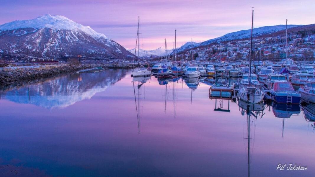 Arctic Experience