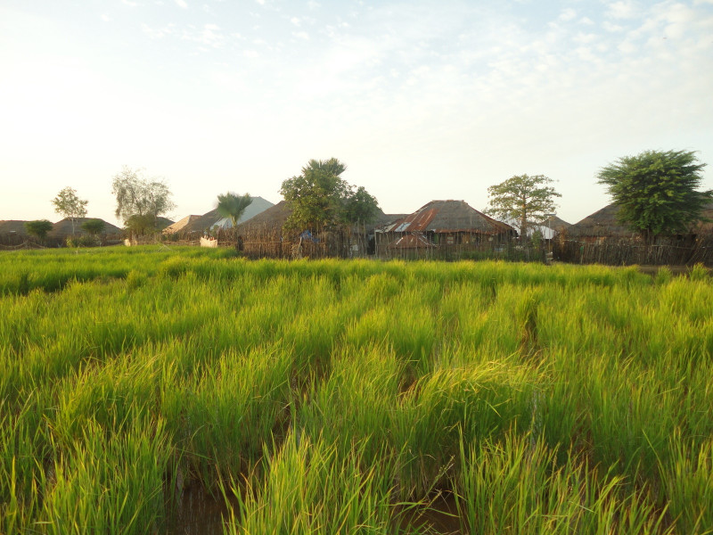 Tambacounda – Ziguinchor