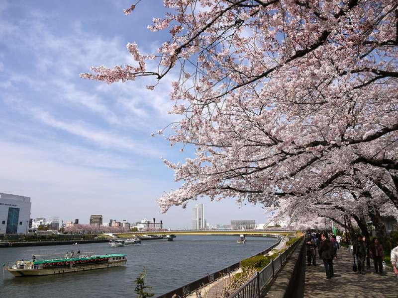KNI Tour Code–201006-B-PVT-Tokyo, Mt.Fuji & Hakone , Kyoto, Bullet (Shinkansen)