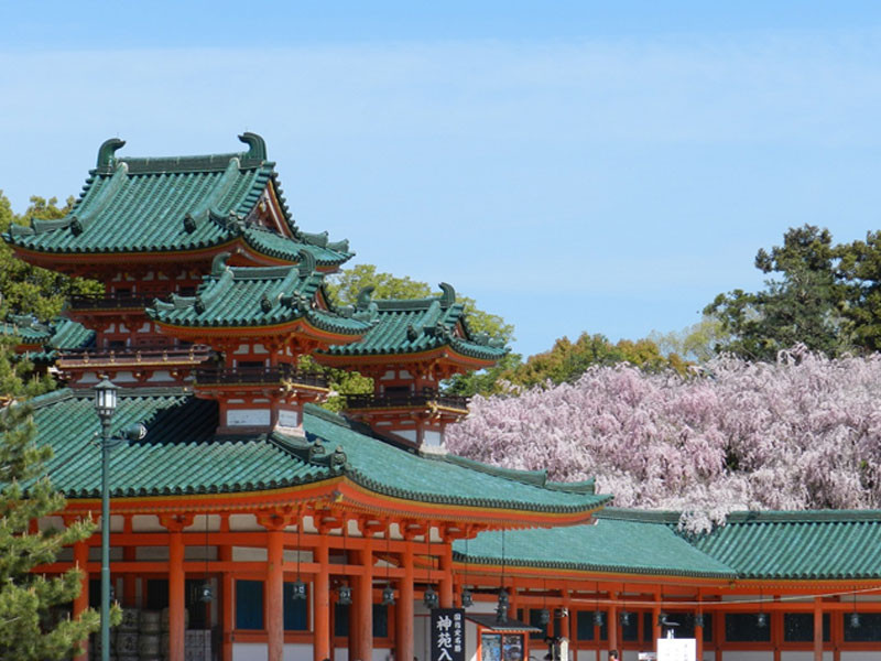 1-Day Express Kyoto Tour from Tokyo