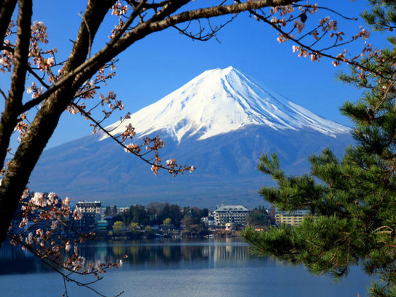 1-Day Mt. Fuji & Hakone