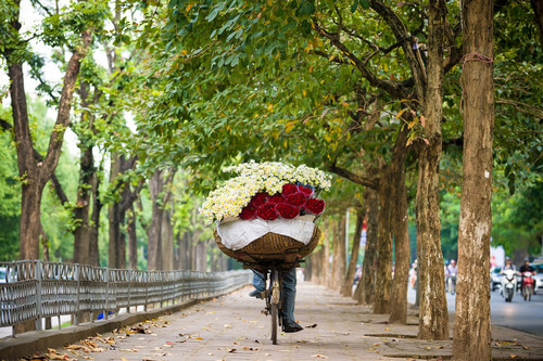 Package 01 -  05 Days in the North of Vietnam
