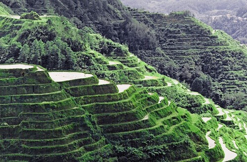 5 Days 4 Nights Banaue-Sagada