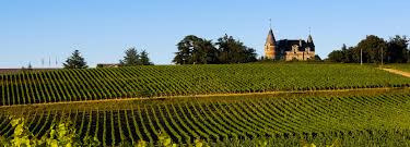 Bordeaux Bike & Wine Tours