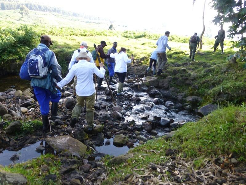 UGANDA & RWANDA PRIMATE EXPEDITIONS - 8 DAYS
