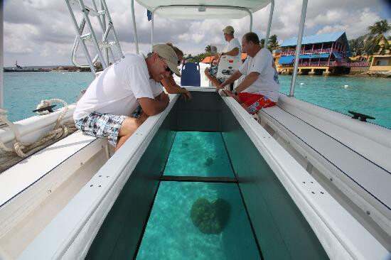 Glass bottom Boat + Turtle Island