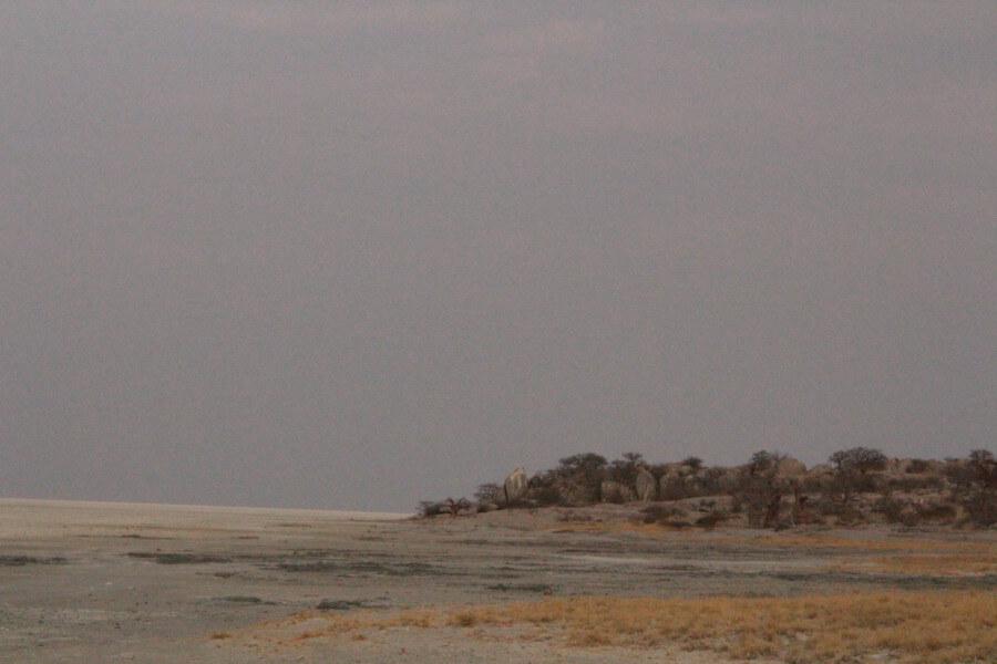 Trip to Nxai Pan National Park