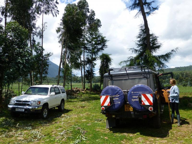 8 DAYS AKAGERA PARK & CONGO GORILLA TREKKING