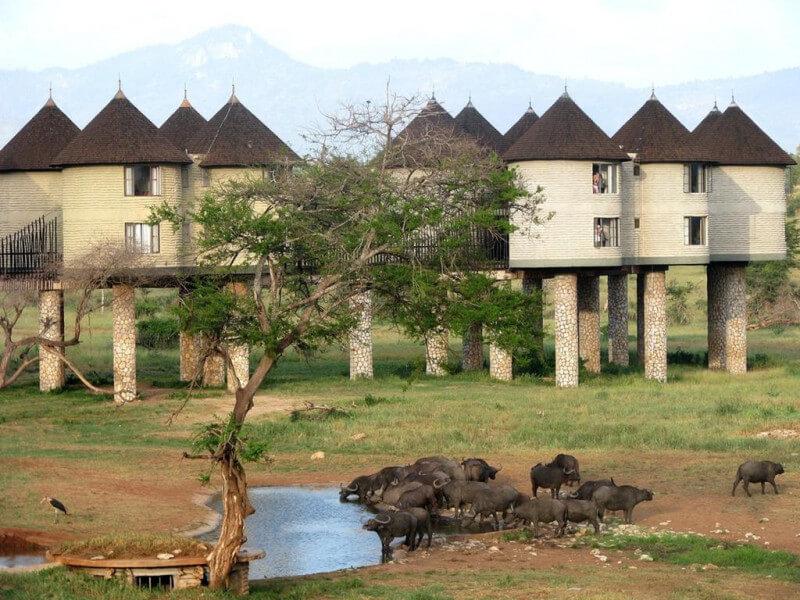 7 Days Kenya Bush N Beach Safari
