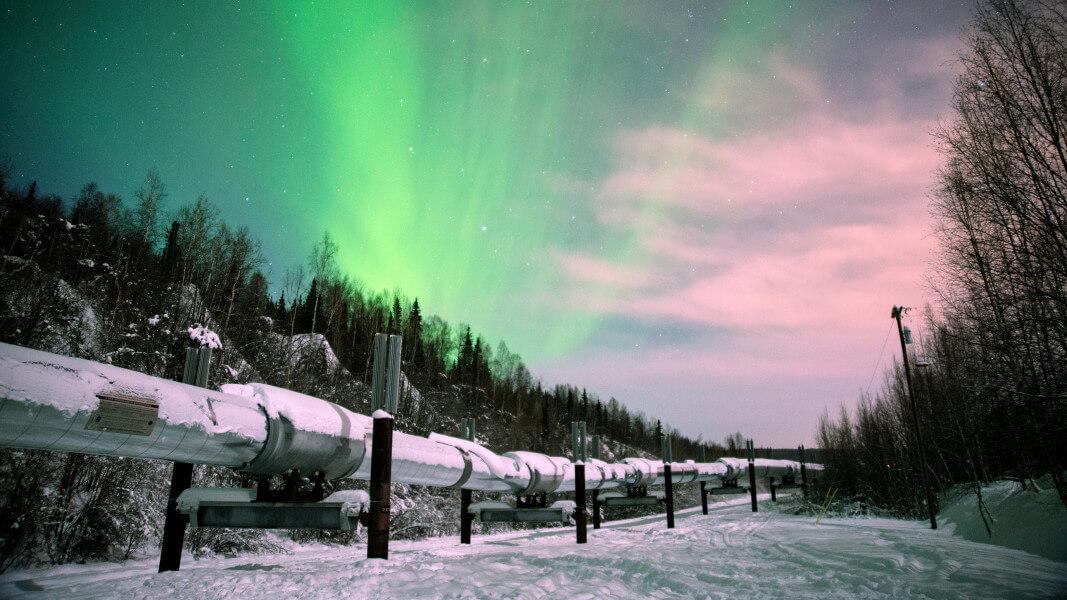 Iditarod Aurora in Denali
