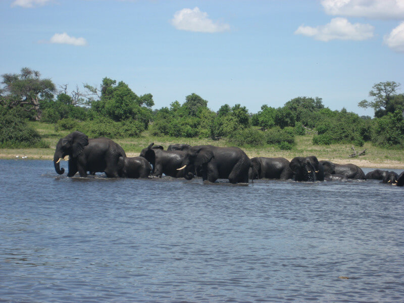 Victoria Falls Botswana Day