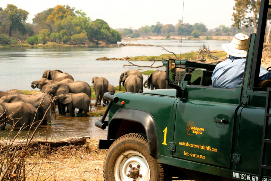 Victoria Falls Zambezi Safari Day
