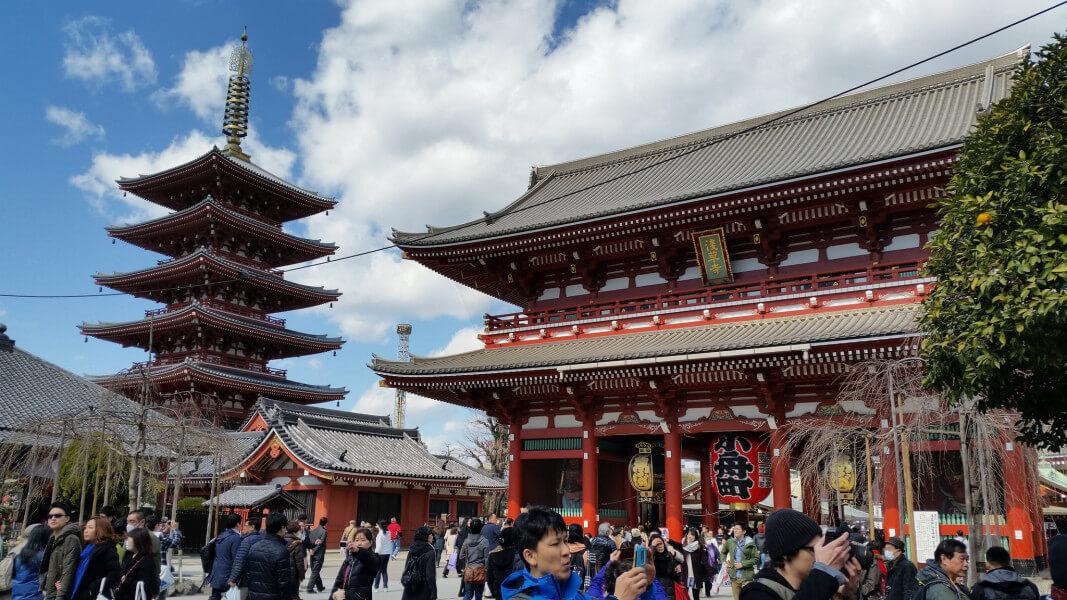 Tokyo City Tour