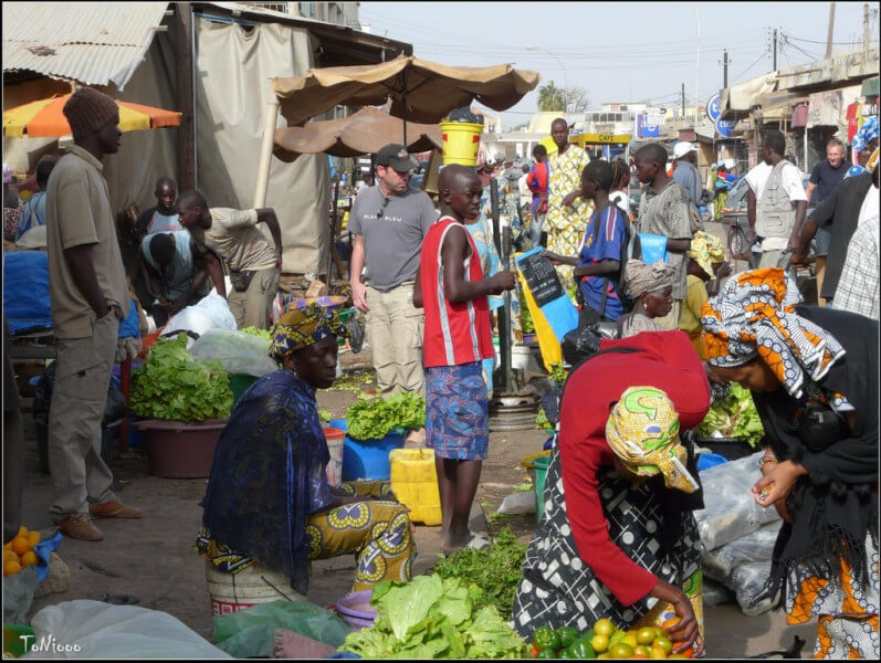 Dakar – Kaolack – Toubacouta
