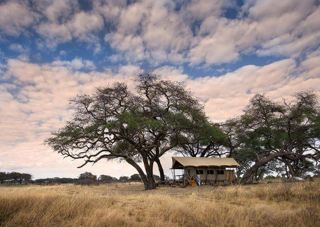 Hwange Bush Camp to Somalisa Expeditions