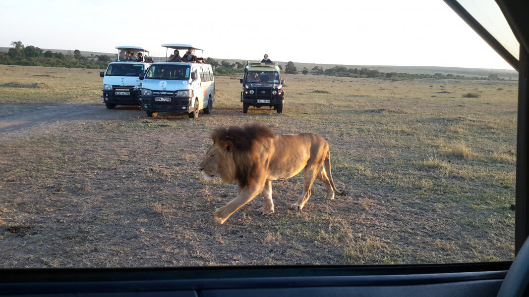 Amboseli Full Day