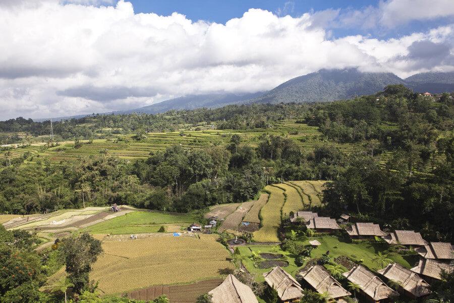 6 Days Bali Round Trip