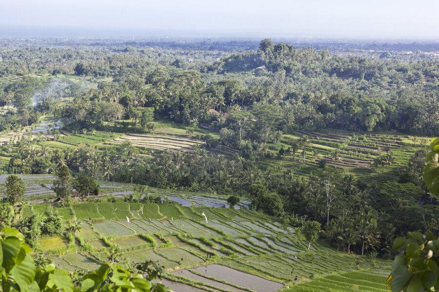 6 Days Best of Bali Island Tour