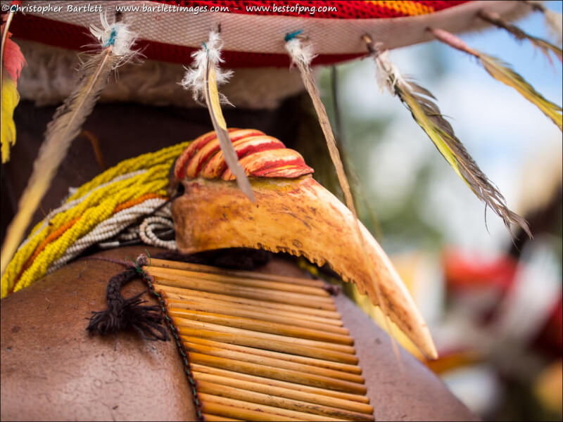 Goroka Festival day 2