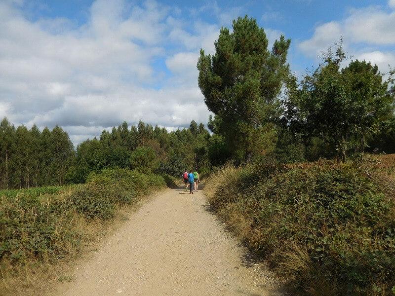 Stage 2: San Romao - Melide (27,7 km)