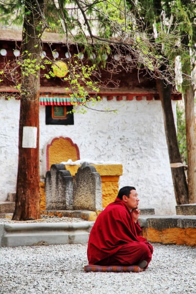 Drepung and Sera monasteries