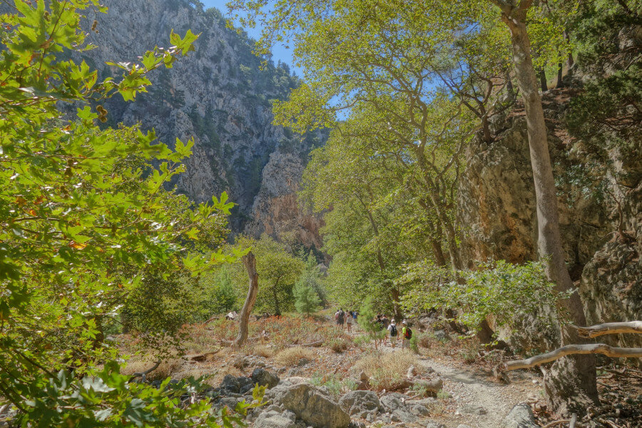 Walk through Agia Irini gorge