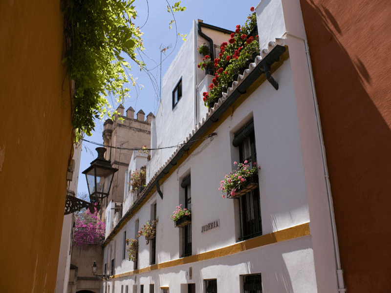 Discover Seville's Rich History