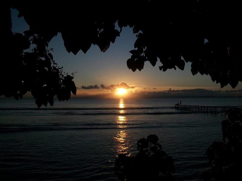 RAINFOREST AND PARADISIACAL ISLAND