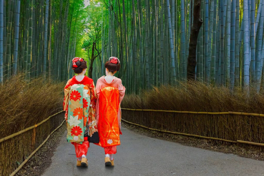 Kyoto Sightseeing and Maiko Dinner