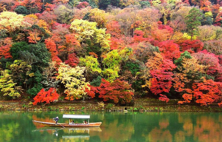 Japan Colorful Autumn Tour - Tokyo, Hakone Hot Springs, Kyoto, Shinkansen