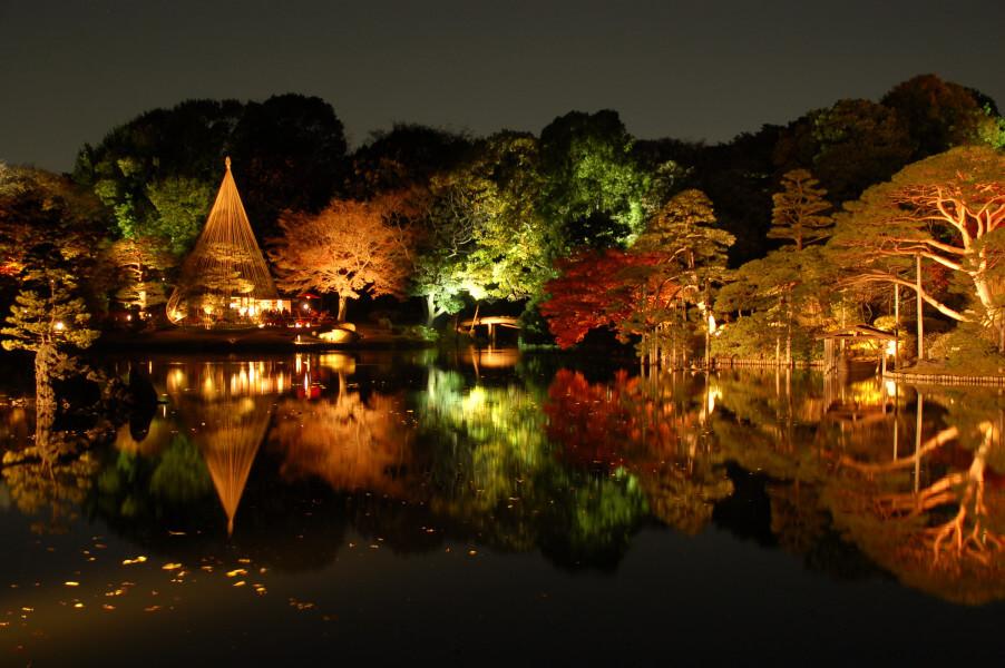 Tokyo Sights, Sushi Workshop & Gardens