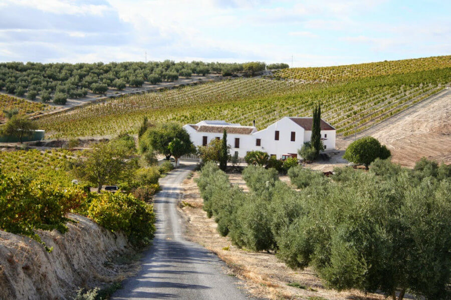 Classic Cultural Tour: The highlights of Andalusia