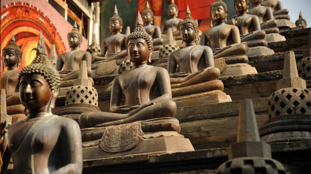 Sri Lanka Discovery - Scheduled