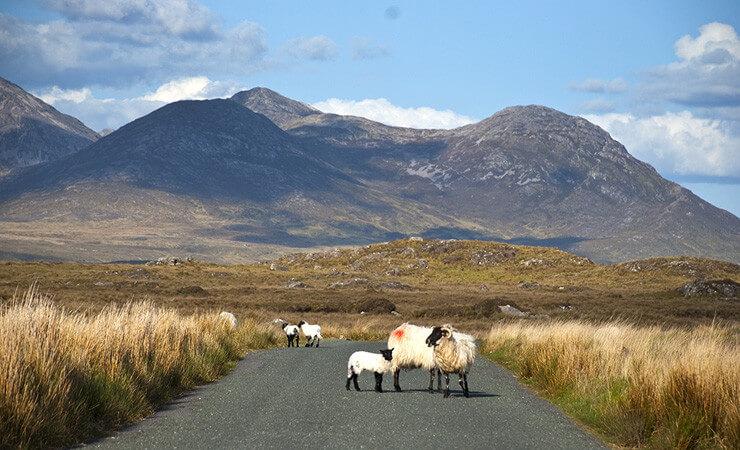 Ireland to Island